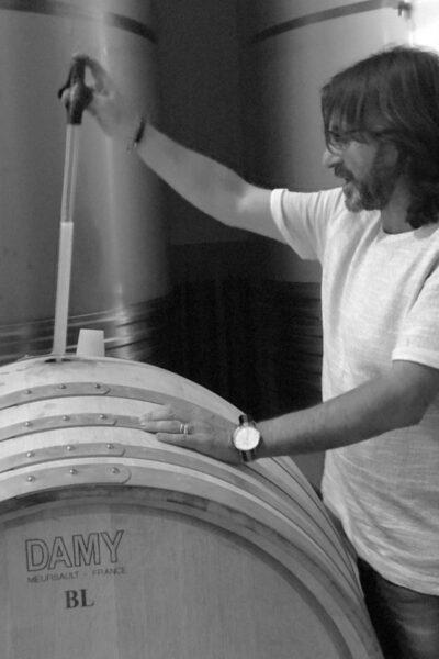 eidos-procesos-del-vino-albarinho